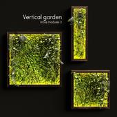 Vertical garden. Moss modules 3