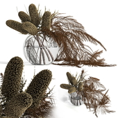 Dry banksia and fern