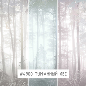 Creativille | Wallpapers | Misty forest 4900
