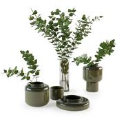 Decorative set with plants