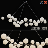 Alberto Dona
