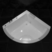 toto,bathtub