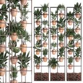 Вертикальное озеленение. 30