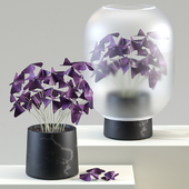 Nebl Plant 2 with frosted glass | Kislitsa (Oxalis)