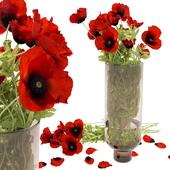 Bouquet in a vase poppy field