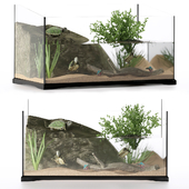 Terrarium for turtles