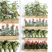 Вертикальное озеленение. 45