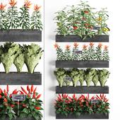 Вертикальное озеленение. 47