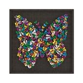 Deco Frame Farfalla