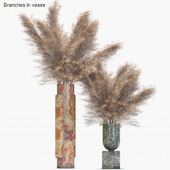 Branches in vases #19 : Dried
