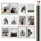 "Poster Set ""Animals"""