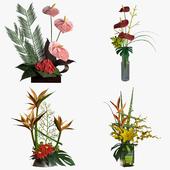 Букеты: антуриум, гербера, лилия