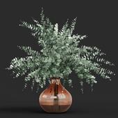 Vase Eucalyptus cinerea