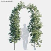 Jasmine gate # 1
