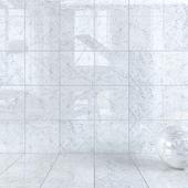 Wall Tiles 369 Carrara