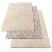 Asiatic nexus rugs
