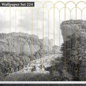 Wallpaper 224