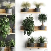 Vertical gardening. 48