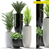 plants 252