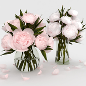 Bouquets of white and pink peonies.