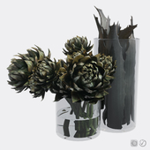 Plant set composed of artichokes and aloe vera