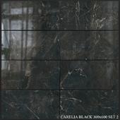 Yurtbay Seramik Carelia Black 300x600 Set 2