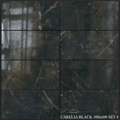 Yurtbay Seramik Carelia Black 300x600 Set 4
