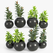 Sphere Dark Grey Planter
