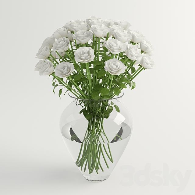white roses - white roses