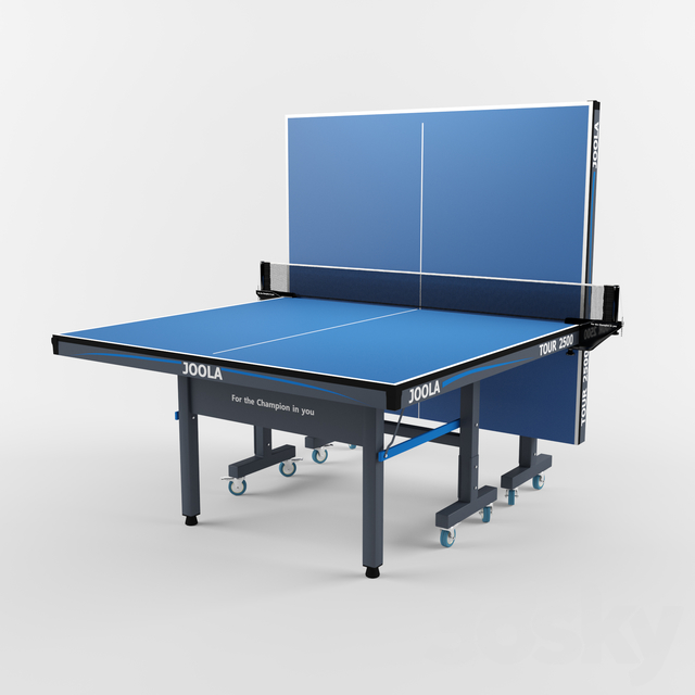 Tennis Table Ping Pong