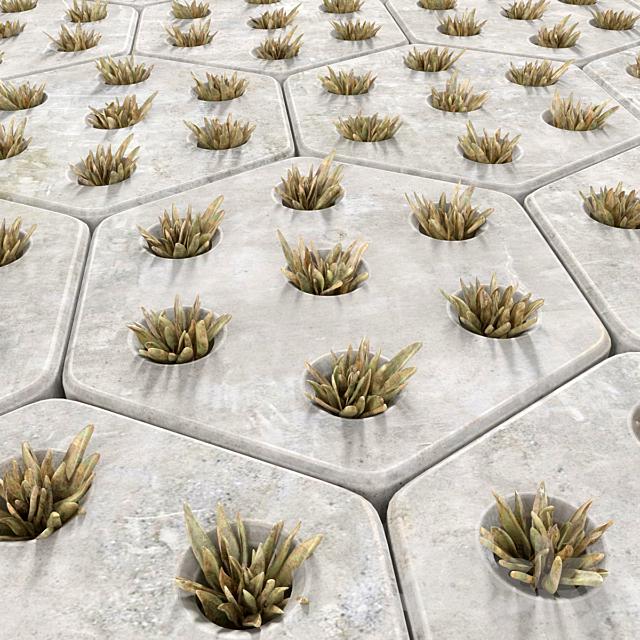 Paving grass / grass pavement