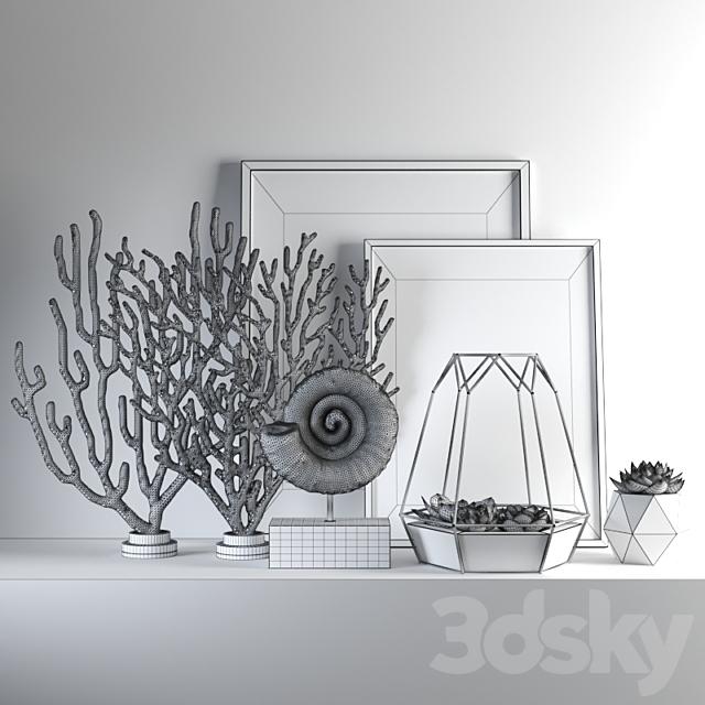 set655 -coral2
