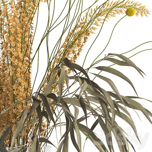 Eremurus & eucalyptus & craspedia bouquet