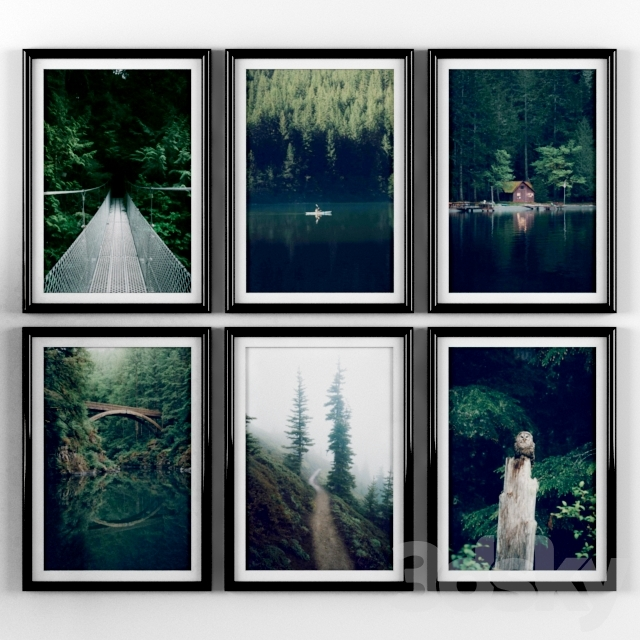 Posters: Forest