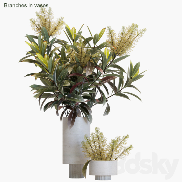 Branches in vases # 12