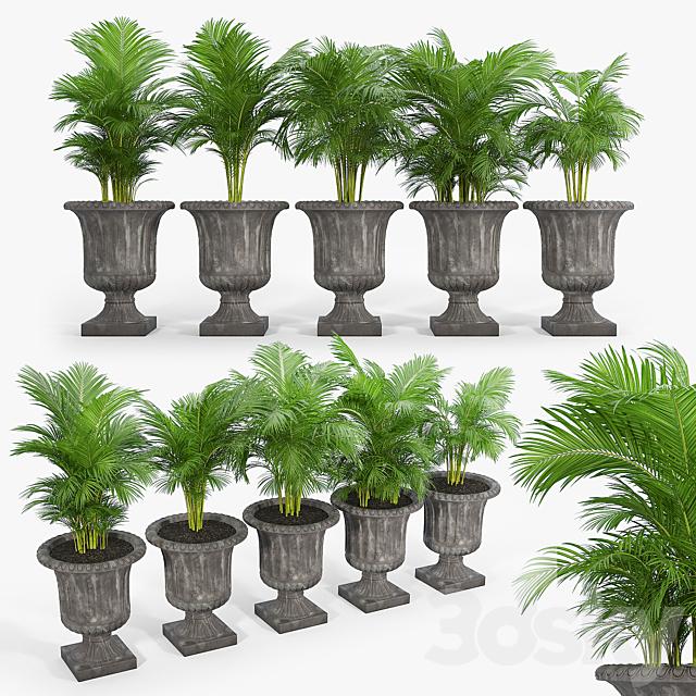 Crawfordsland Metal Pot Planter 03