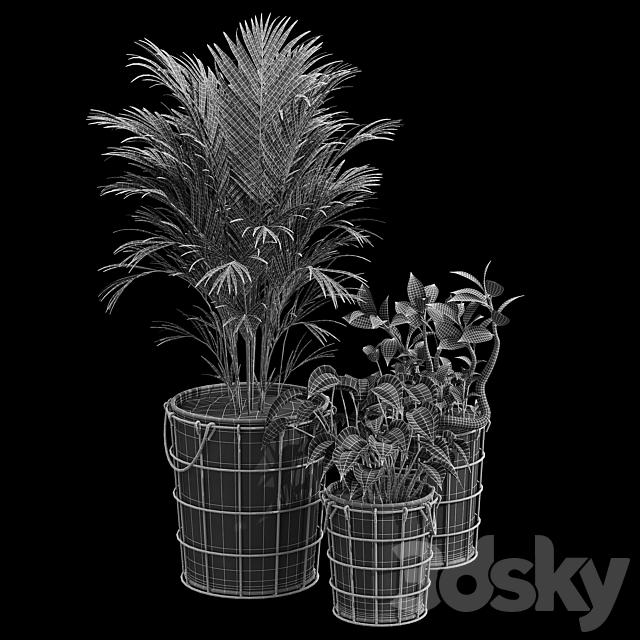 Farmstead planters