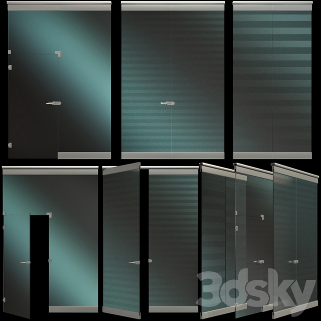 Glass Partition with door
