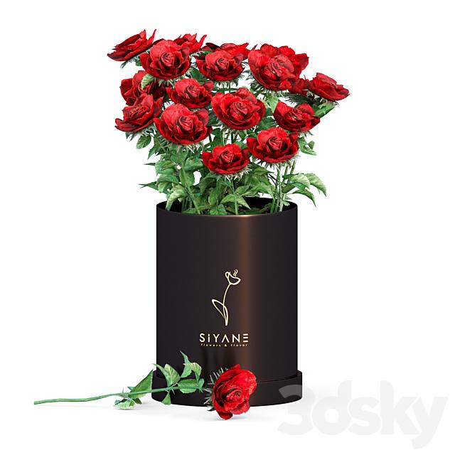 Red rose vase