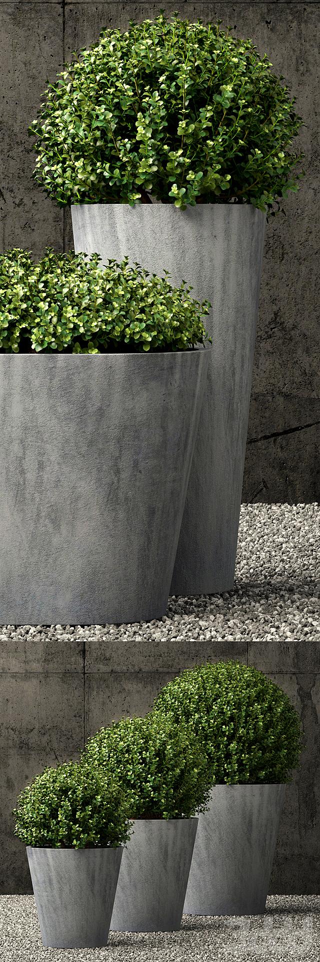 Restoration Hardware estate zinc round planters