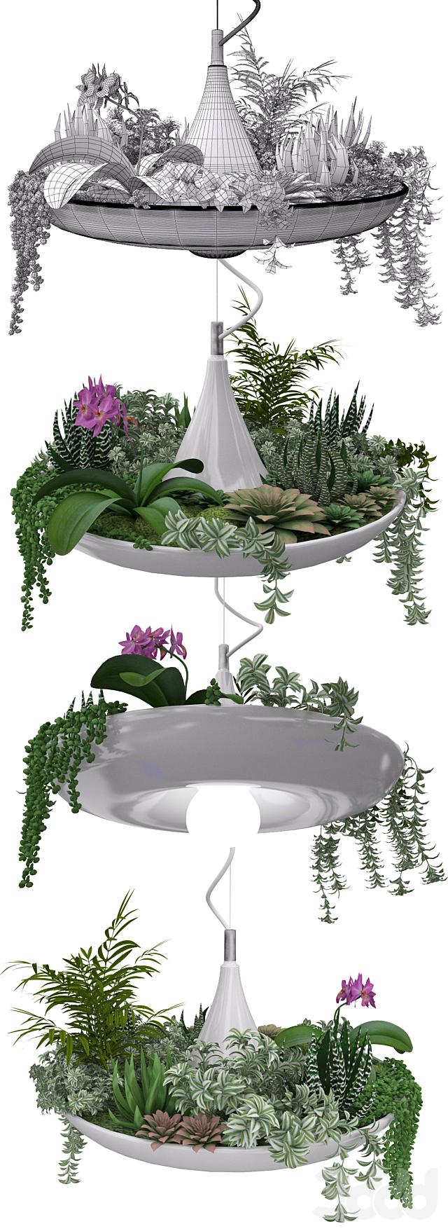 Babylon Plantable Lamp vol.4