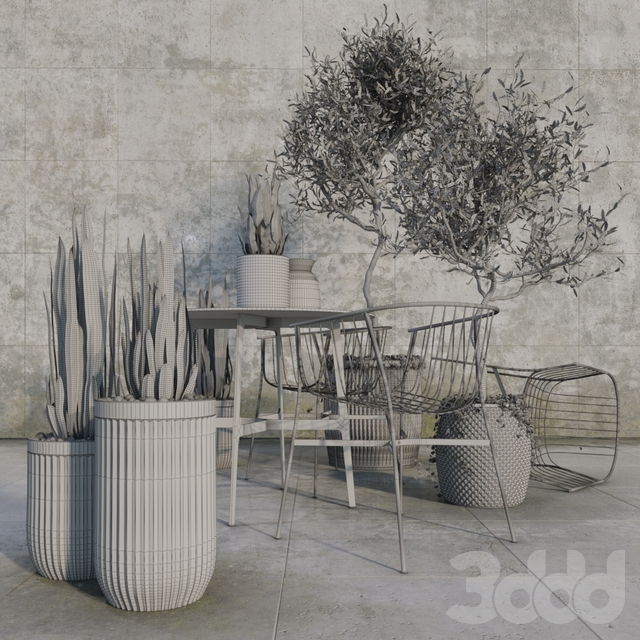 Outdoor_plant_set
