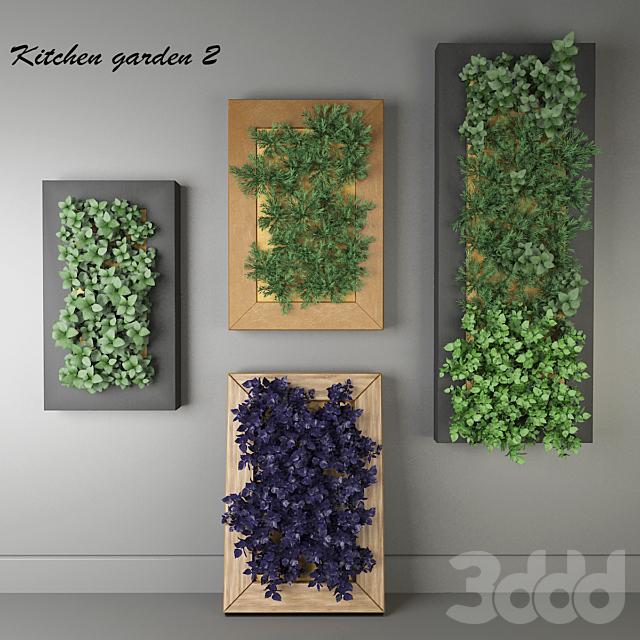 Кухонные травы # 2