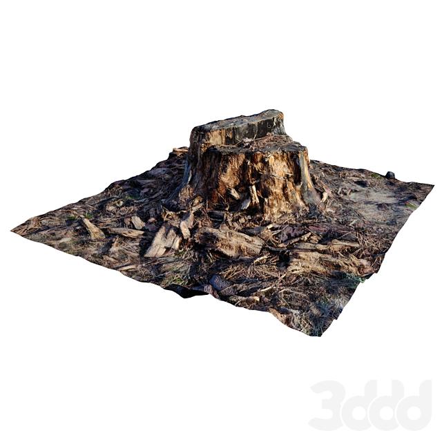break down stump