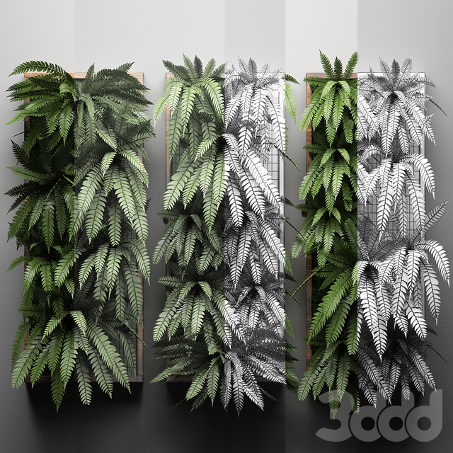 Vertical garden 30.
