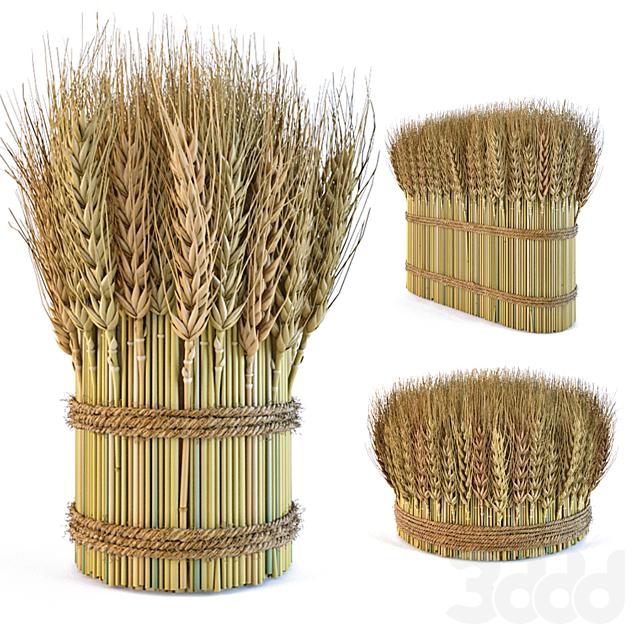 Декоративные снопы из колосьев пшеницы 2