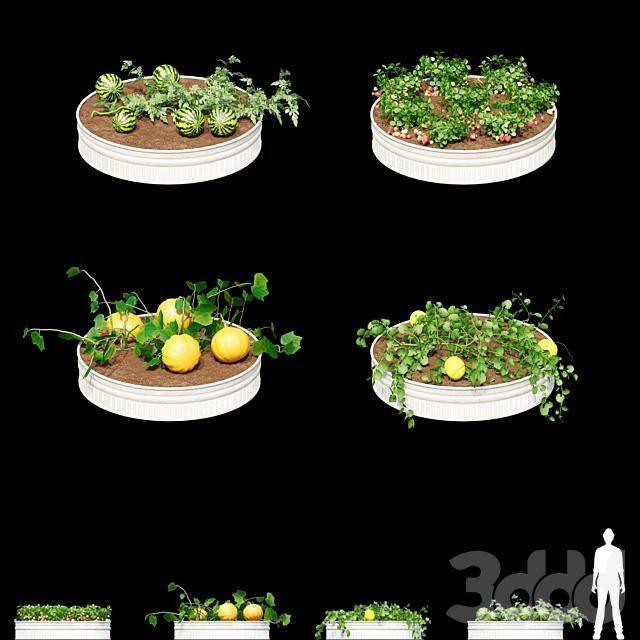 Огород | Kitchen garden.vol 2