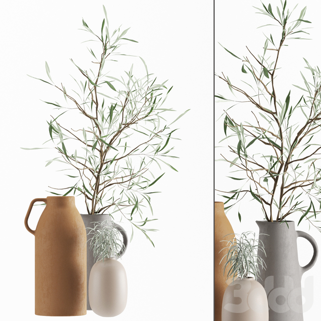 Vases set by H & M with olive and rosmarinus branch