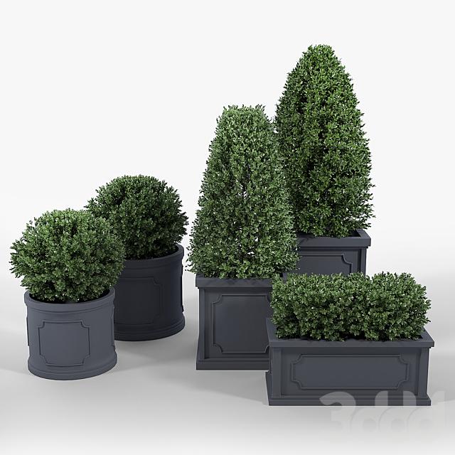 Birmingham Planter Collection