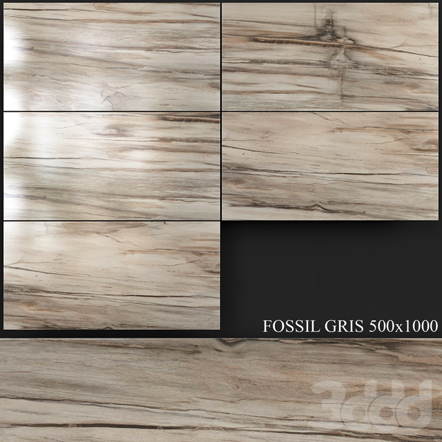 Azuliber Fossil Gris 500x1000